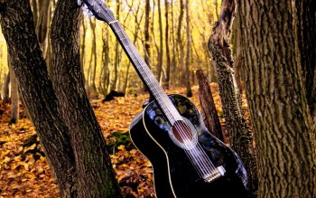 Musik - Gitar Wallpapers and Backgrounds ID : 479455