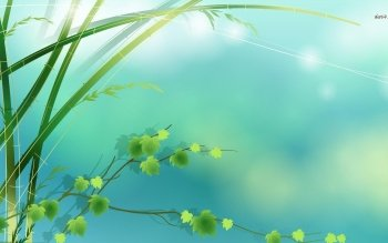Tierra - Bamboo Wallpapers and Backgrounds ID : 481155