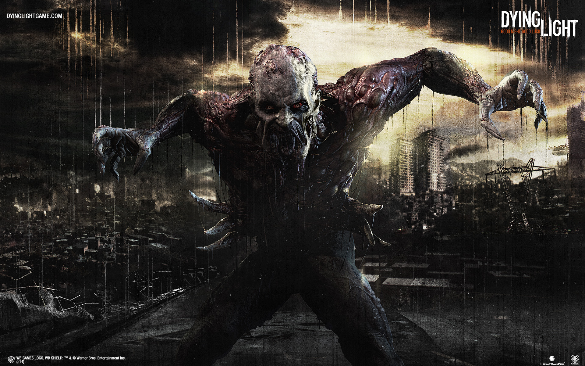 dying light iphone 6 plus wallpaper