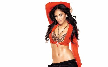 Music - Nicole Scherzinger Wallpapers and Backgrounds ID : 493211