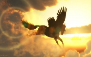 Fantasy - Pegasus Wallpapers and Backgrounds ID : 493253