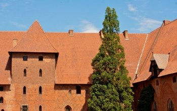 Man Made - Malbork Castle Wallpapers and Backgrounds ID : 494426