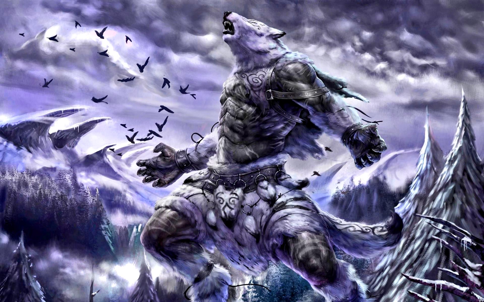 winter wolf computer wallpapers desktop backgrounds
