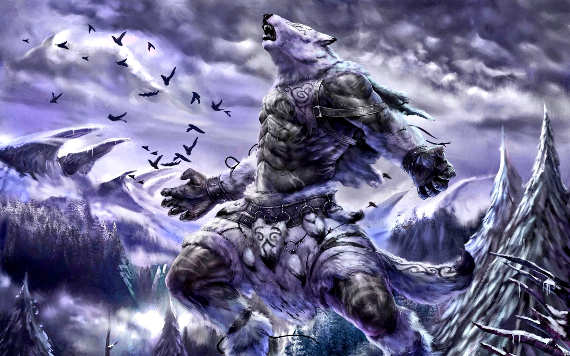 Winter Wolf HD Wallpaper
