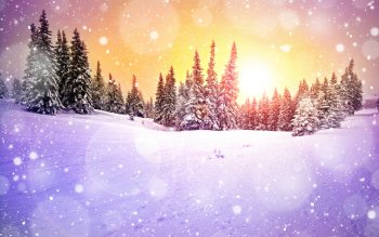 Earth - Winter Wallpapers and Backgrounds ID : 495306