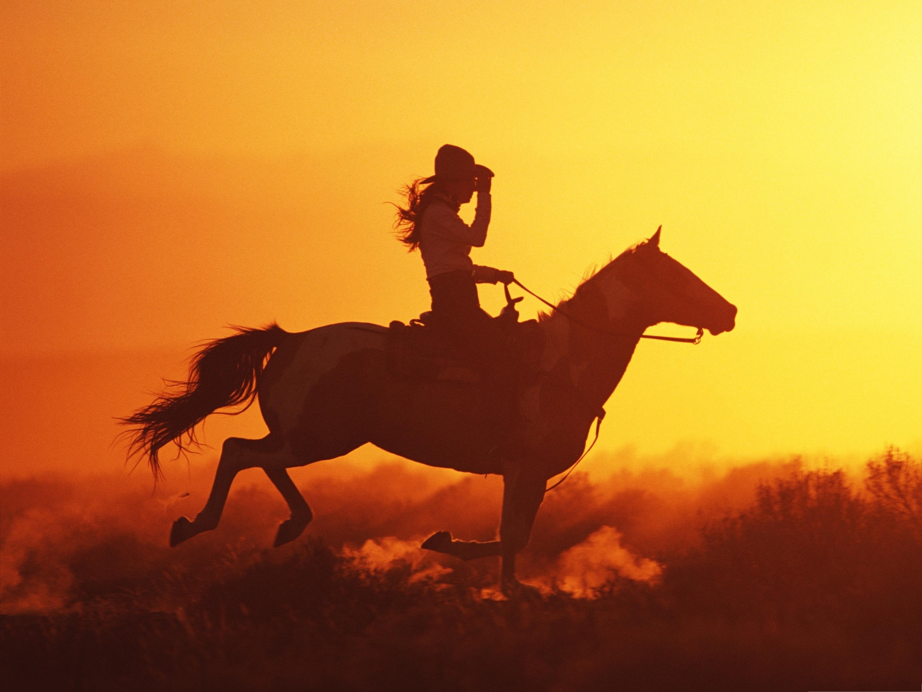 cowgirl silhouett wallpaper - photo #3