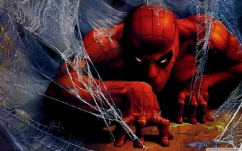 Комиксы - Spider-Man Wallpapers and Backgrounds ID : 504114