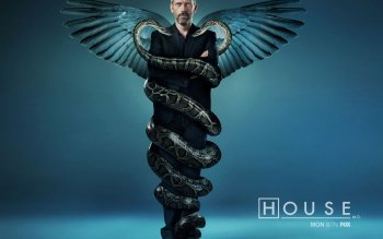 TV Show - House Wallpapers and Backgrounds ID : 504197