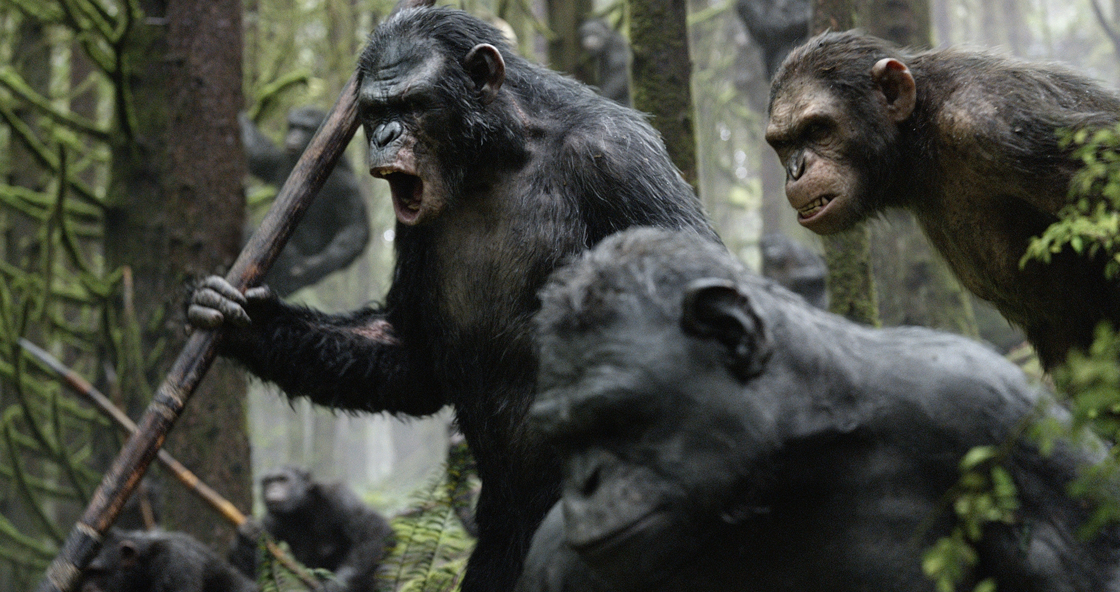 Planet Of The Apes Wallpaper: Dawn Of The Planet Of The Apes HD Wallpaper