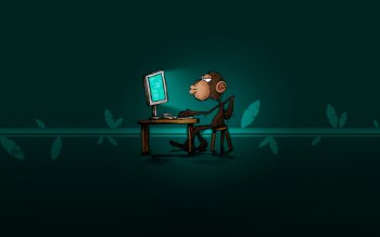 Humor - Monkey Wallpapers and Backgrounds ID : 508263