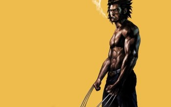 337 wolverine hd wallpapers background images wallpaper abyss hd wallpaper background image id509103 voltagebd Images