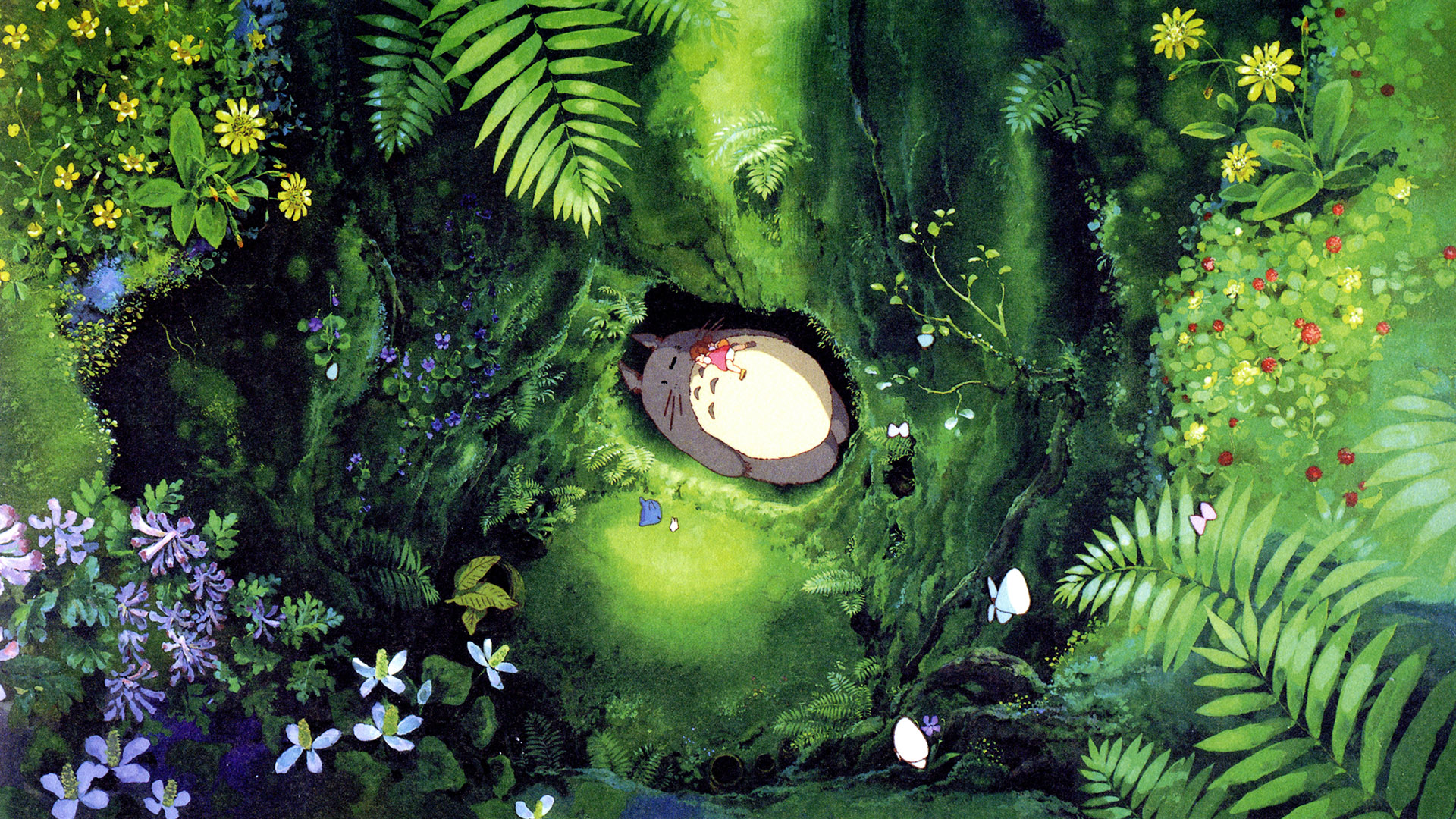 My Neighbor Totoro Hd Wallpaper Background Image 1920x1080 Id 517085 Wallpaper Abyss
