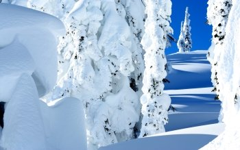 Earth - Winter Wallpapers and Backgrounds ID : 522459