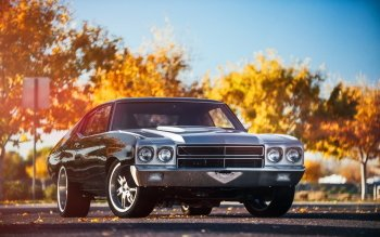 Vehicles - Chevrolet Chevelle Wallpapers and Backgrounds ID : 523340