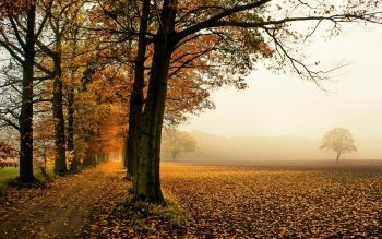 Earth - Autumn Wallpapers and Backgrounds ID : 523361