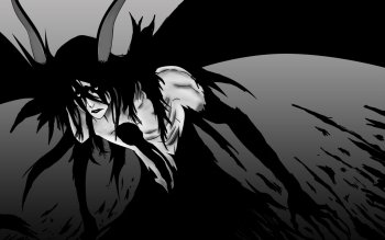 Anime - Bleach Wallpapers and Backgrounds ID : 524897
