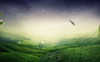 Fantasy - Landscape Wallpapers and Backgrounds ID : 526196