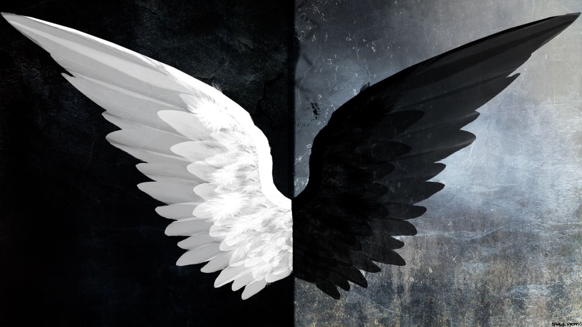 angel wings black background - photo #1