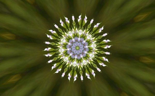 Artistic Flower Flowers Green Kaleidoscope HD Wallpaper   Background Image