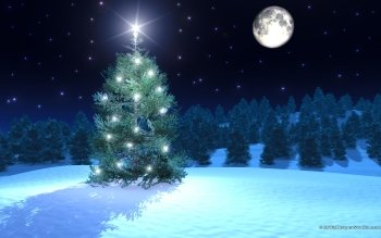 Holiday - Christmas Wallpapers and Backgrounds ID : 530510