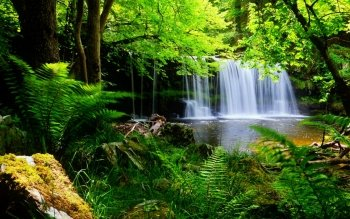 Earth - Waterfall Wallpapers and Backgrounds ID : 530617