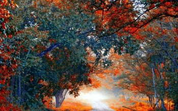 Earth - Autumn Wallpapers and Backgrounds ID : 530716