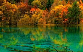 Earth - Autumn Wallpapers and Backgrounds ID : 531361