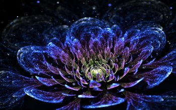 Abstract - Fractal Wallpapers and Backgrounds ID : 533196