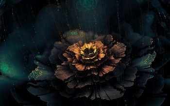 Abstract - Fractal Wallpapers and Backgrounds ID : 534024