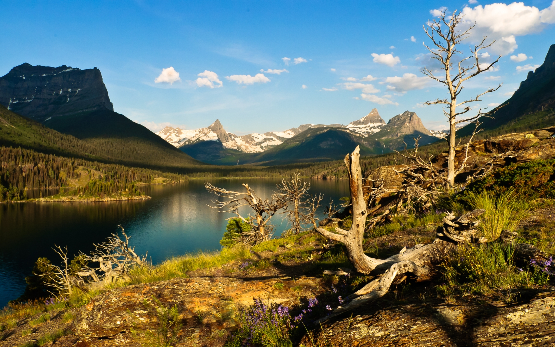 Saint Mary Lake HD Wallpaper