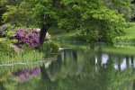 Preview Lakes