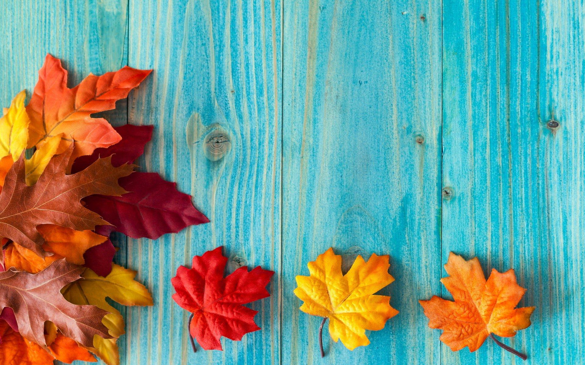 Обои на рабочий стол листья осени