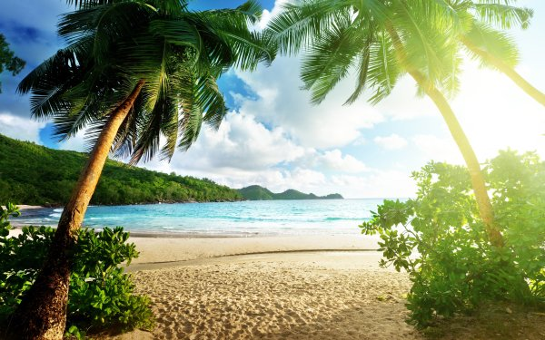 Photography Tropical Seascape HD Wallpaper | Background Image