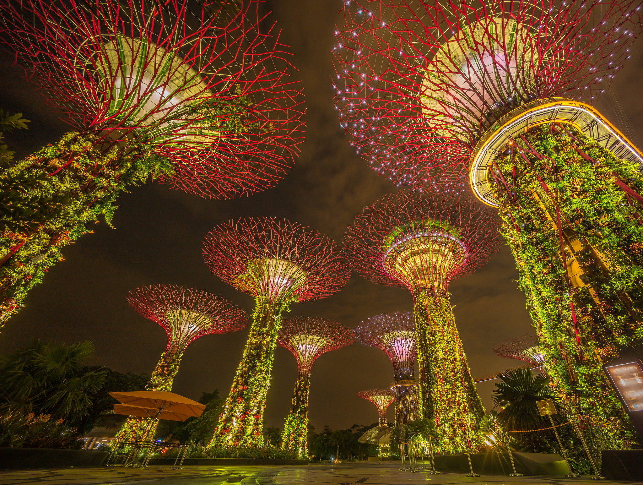man made marina bay sands garden singapore wide angle plant wallpaper - Garden By The Bay Breakfast
