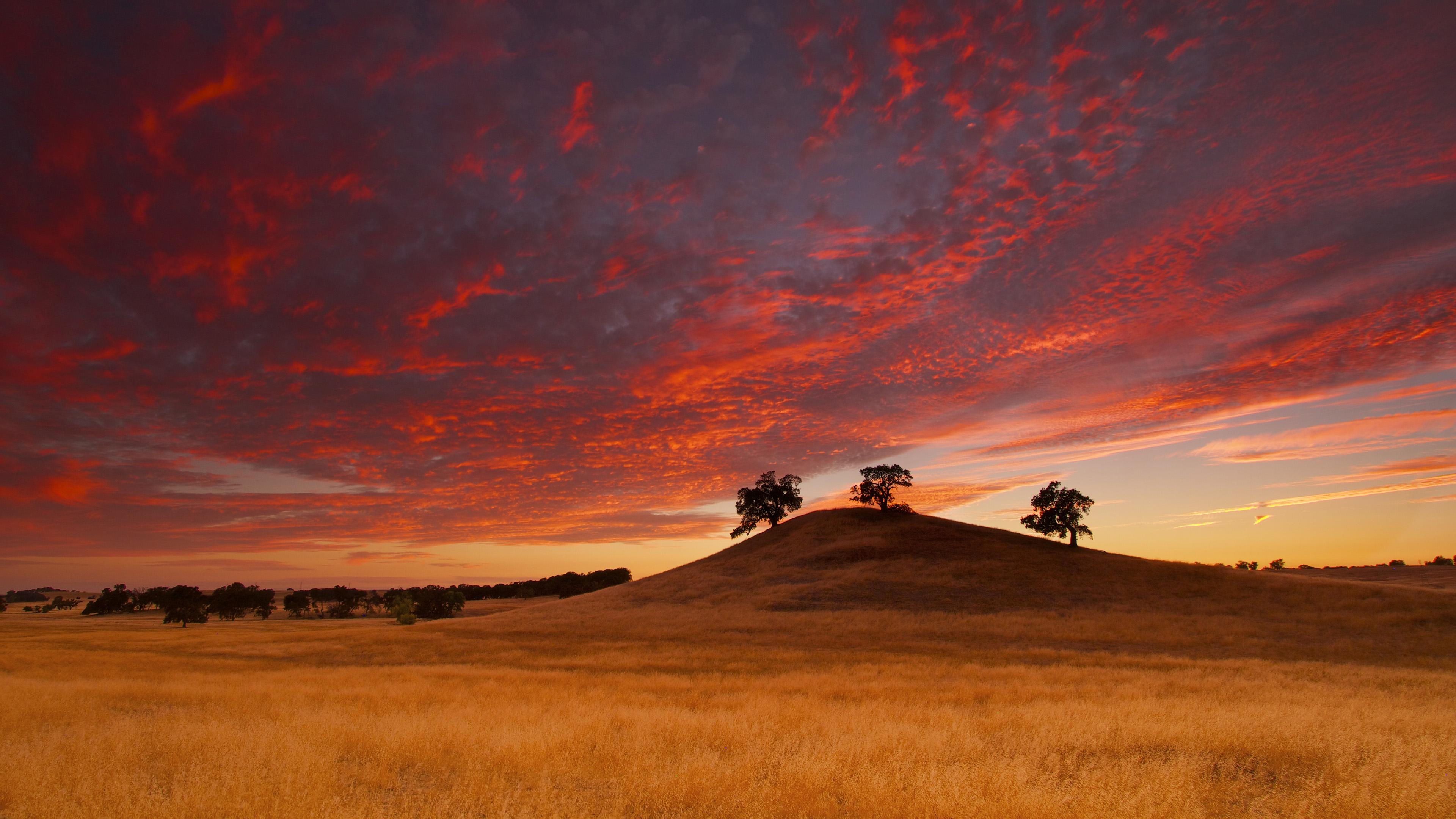 Sunset 4k Ultra HD Wallpaper | Background Image ...