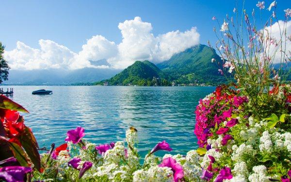 Fotografía Lago Lagos Flor Florecer Nube Montaña Verano Fondo de pantalla HD | Fondo de Escritorio