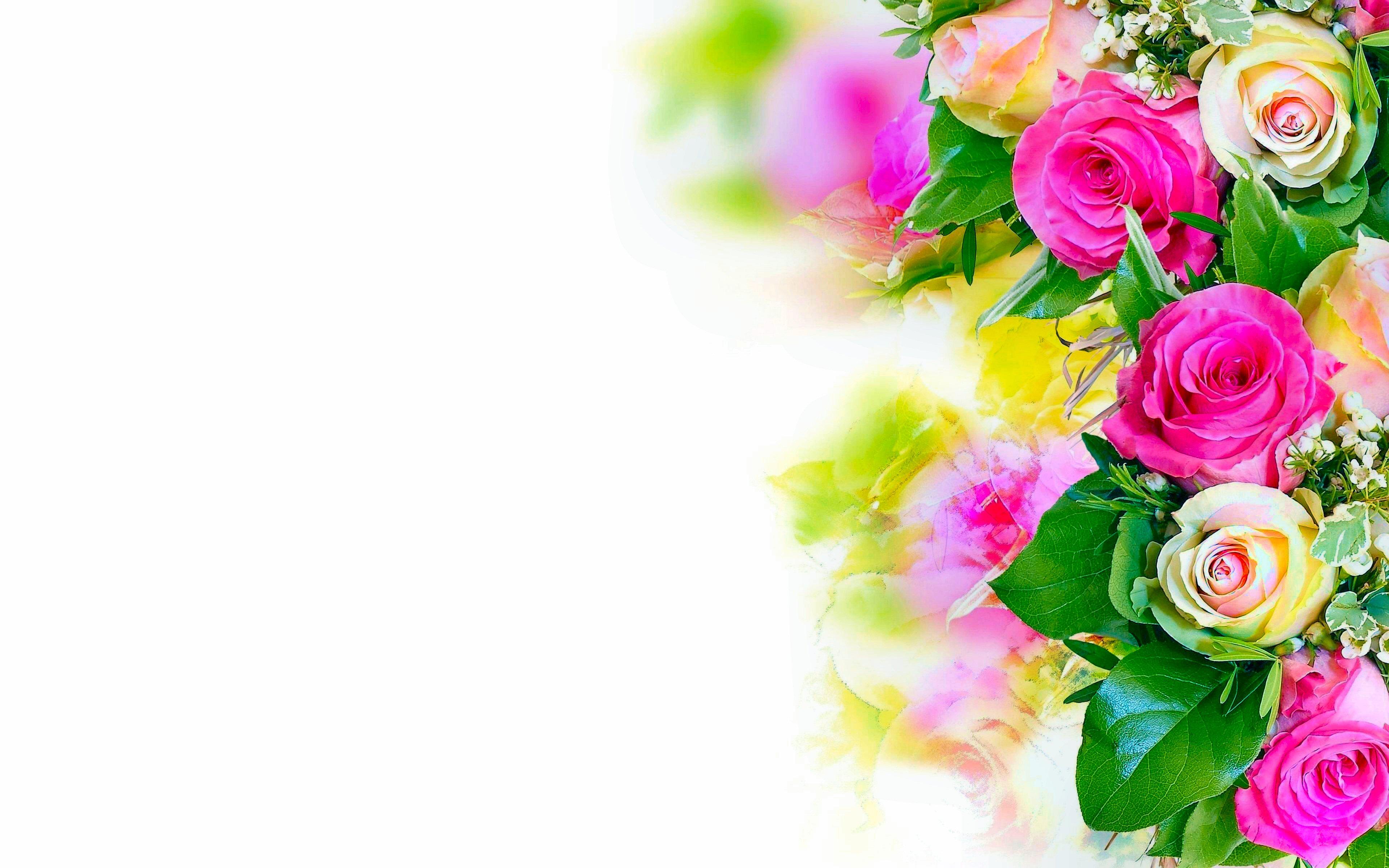 13071 fleurs fonds d'écran hd   arrière-plans - wallpaper abyss