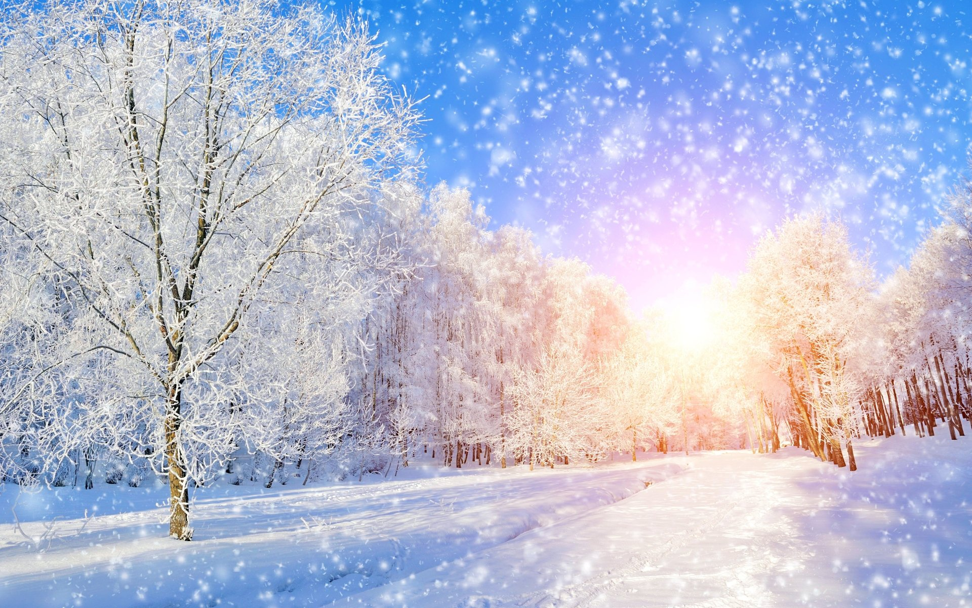 Earth - Winter  Blue Pastel Nature Scenic Sky Snow White Wallpaper