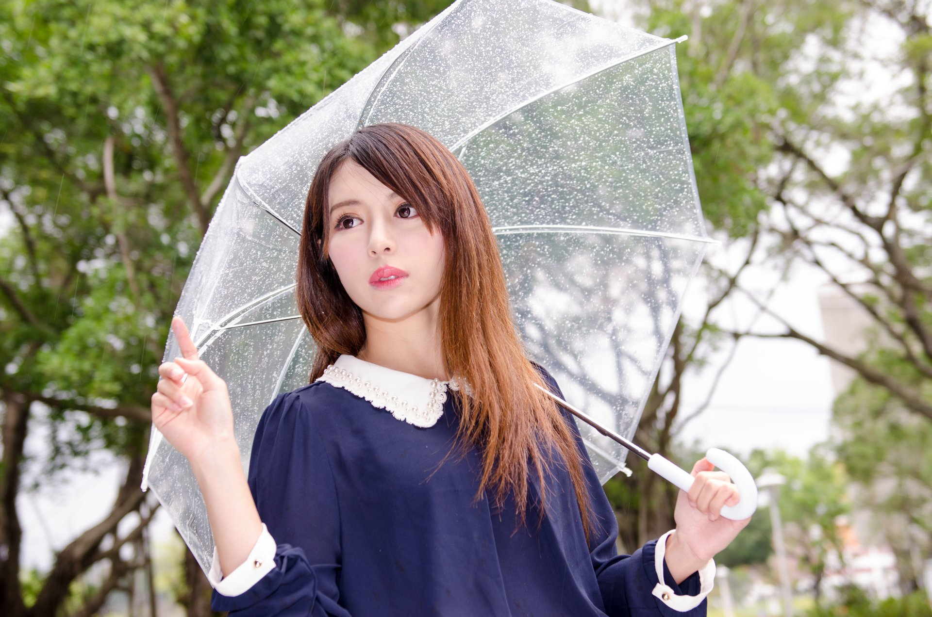 Wallpapers ID:590694