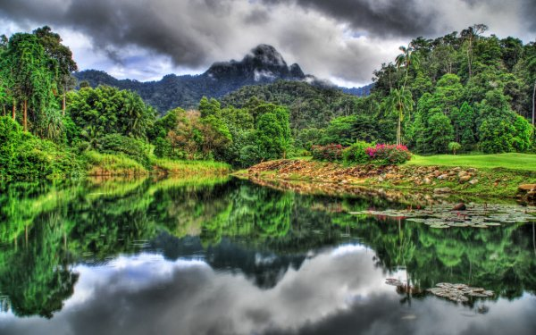 Earth Jungle Reflection HDR Langkawi Island Malaysia Fog HD Wallpaper | Background Image