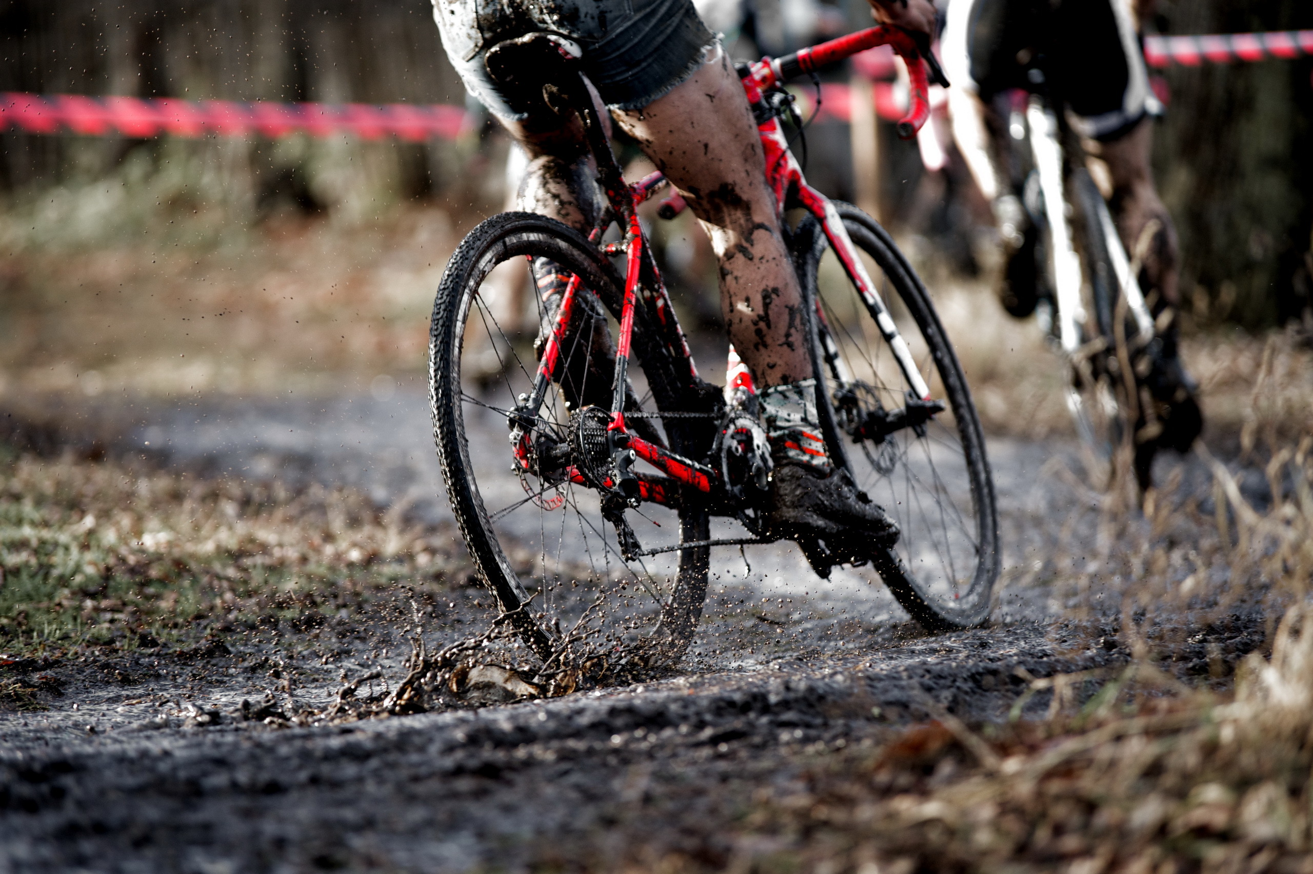 Cycling Full HD Wallpaper and Background Image | 2560x1703 ...