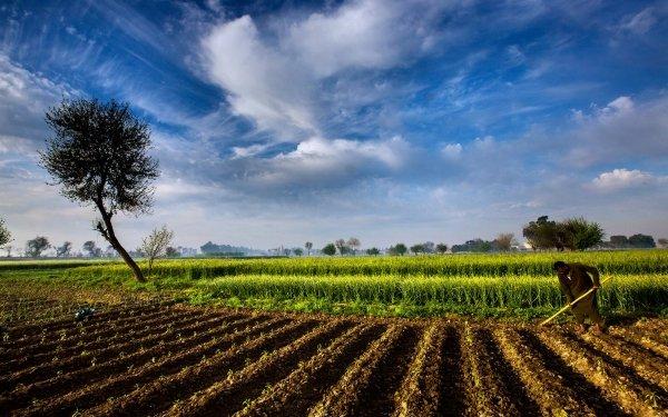 Tierra/Naturaleza Campo Pakistan Countryside Cielo Naturaleza Paisaje Granja Fondo de pantalla HD | Fondo de Escritorio