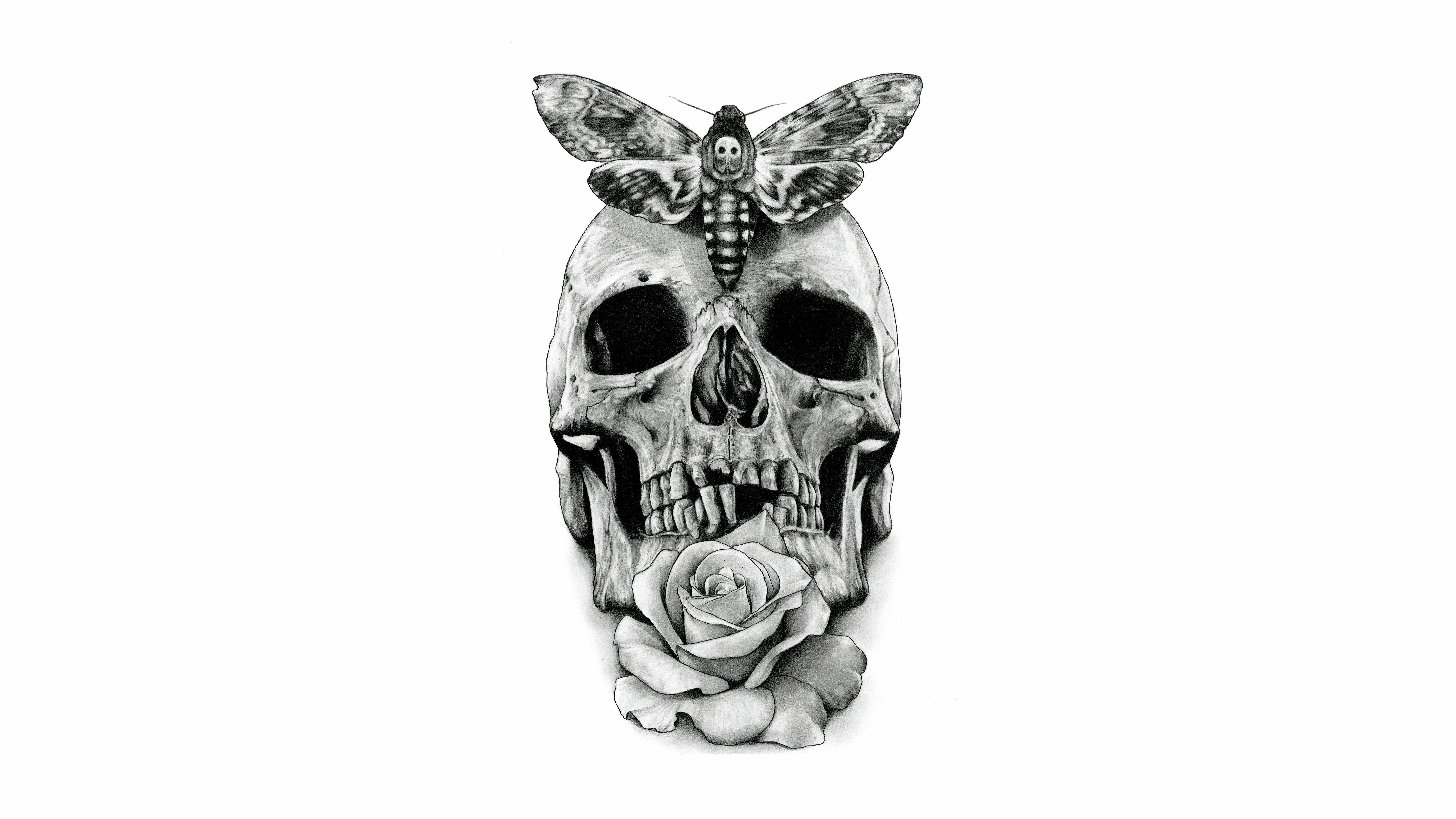 Skull 8k Ultra HD Wallpaper | Background Image | 8850x4977