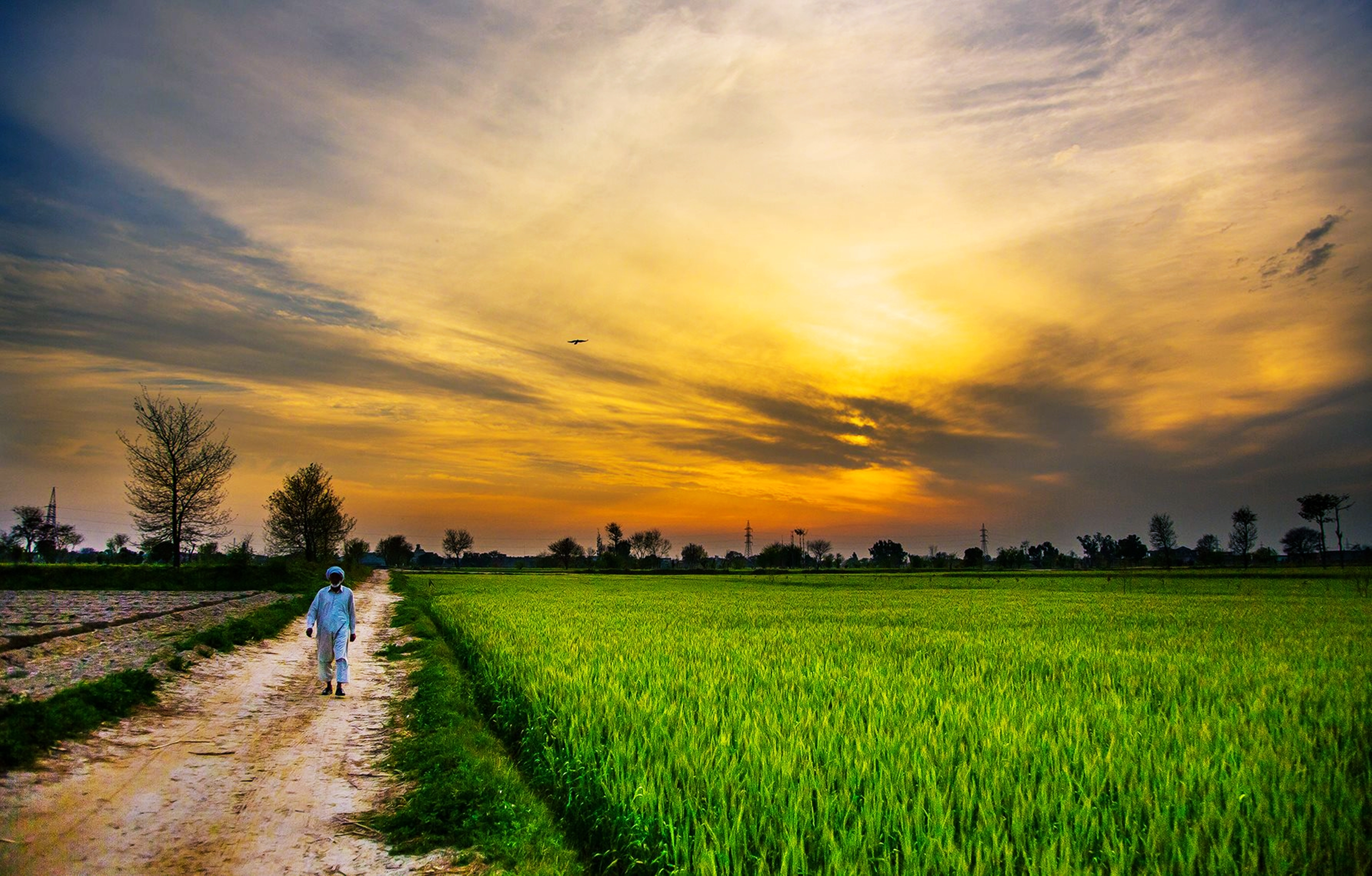 62 countryside hd wallpapers backgrounds wallpaper for Countryside wallpaper for walls