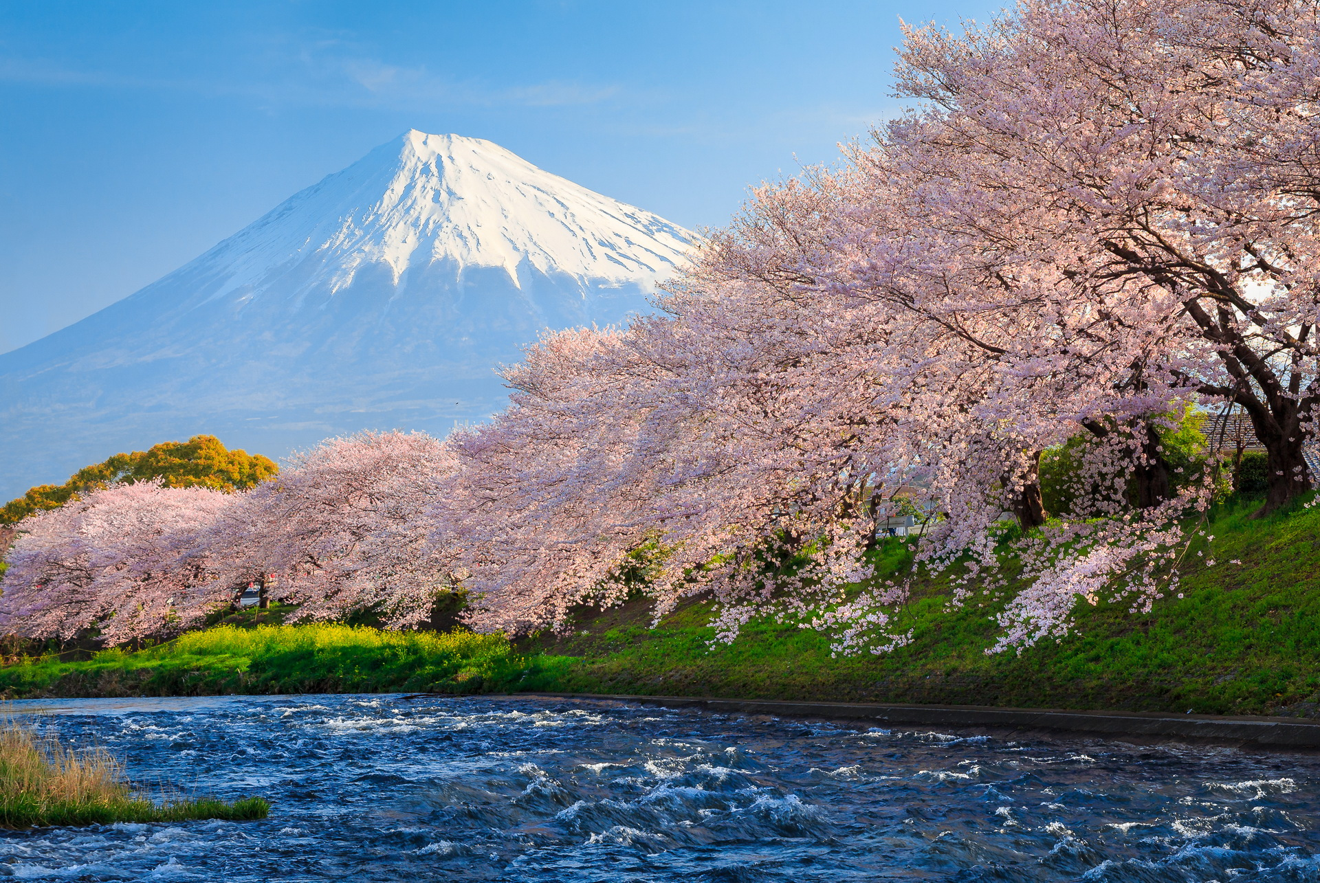 Mount Fuji Full Hd Wallpaper And Background Image