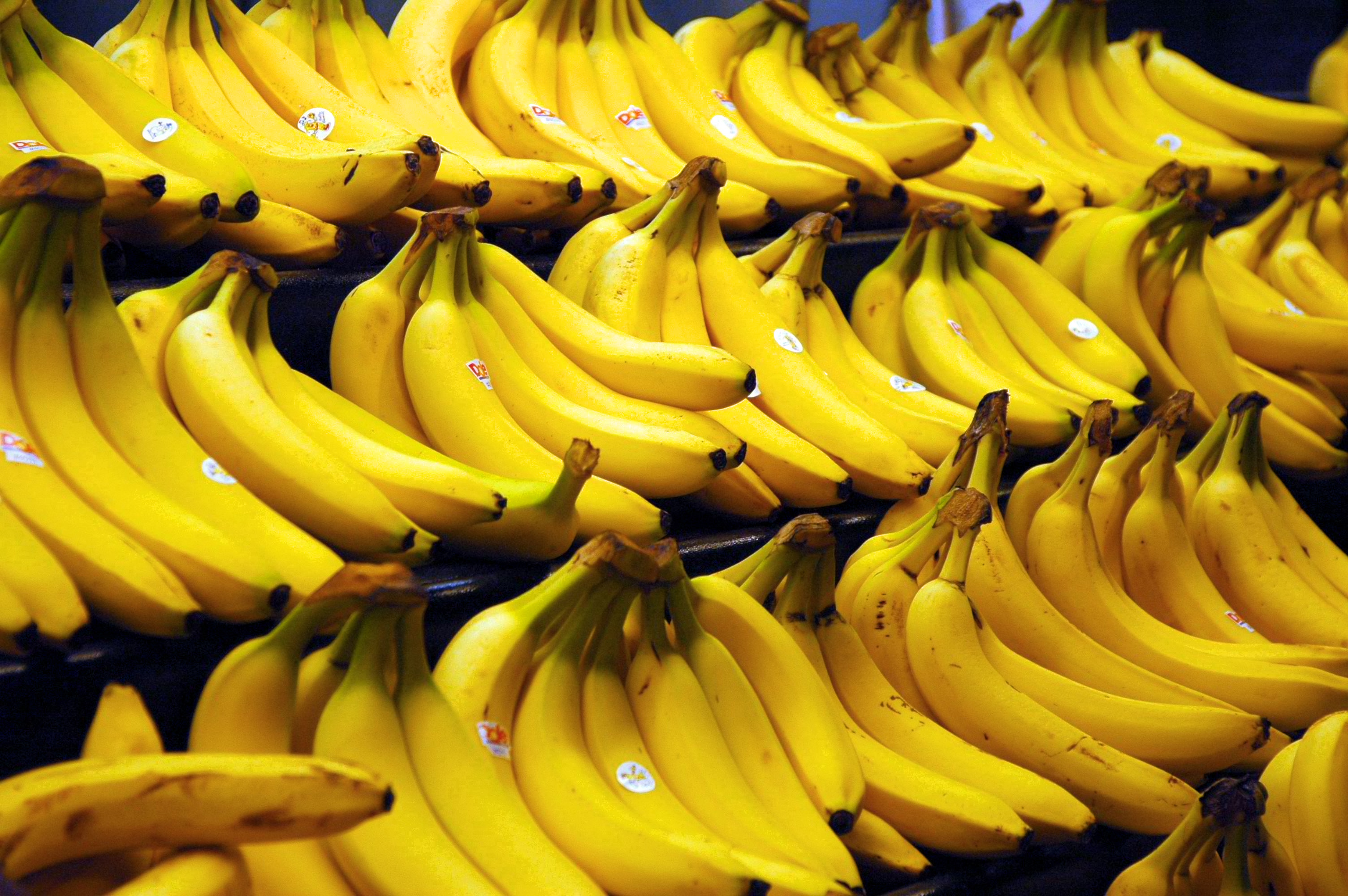 banana hd wallpaper | background image | 3008x2000 | id:614485