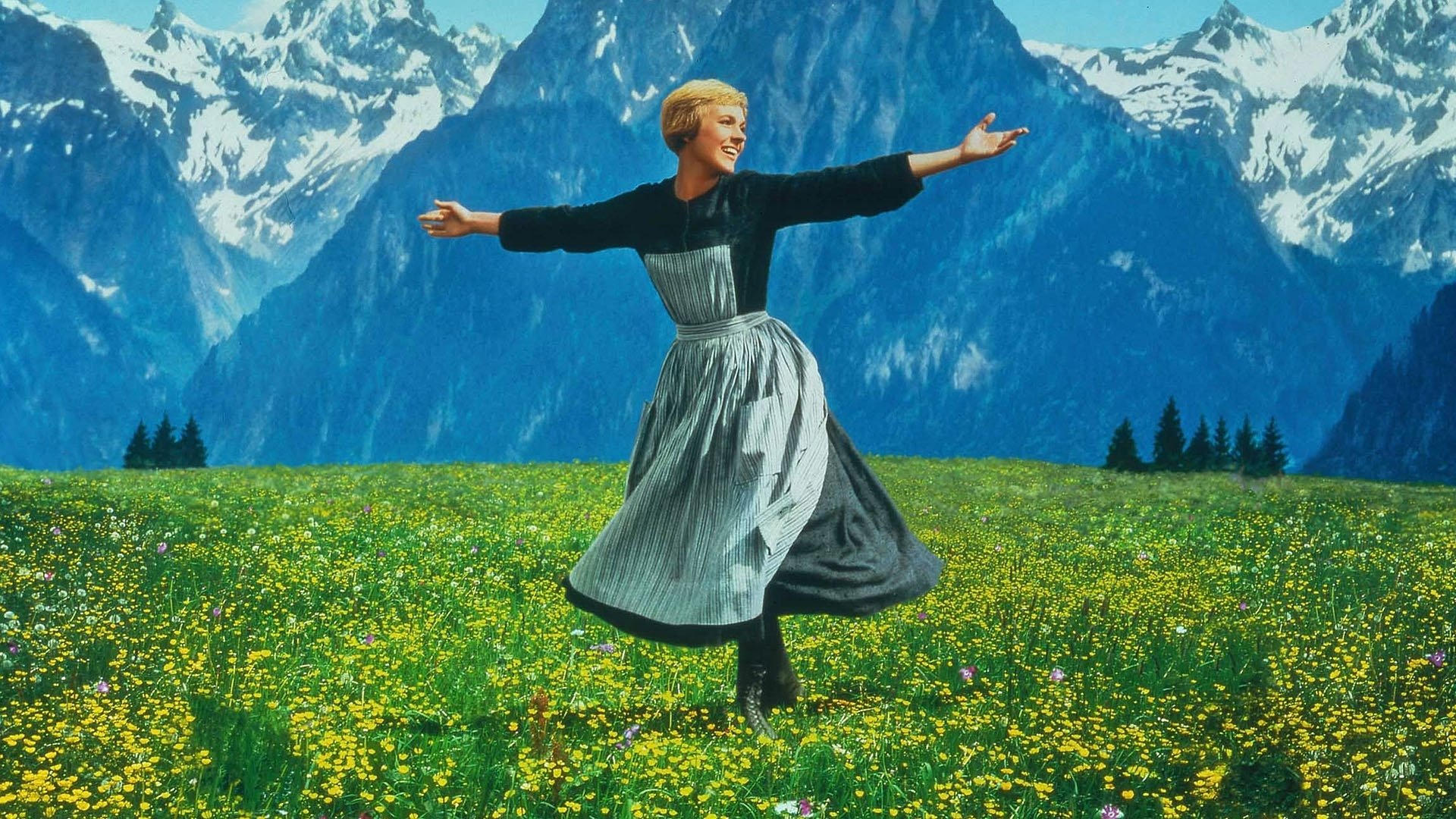 10 The Sound Of Music Hd Wallpapers Background Images Wallpaper Abyss