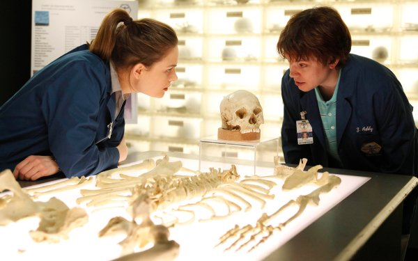 TV Show Bones Temperance Brennan Emily Deschanel Eric Millegan Zack Addy HD Wallpaper   Background Image