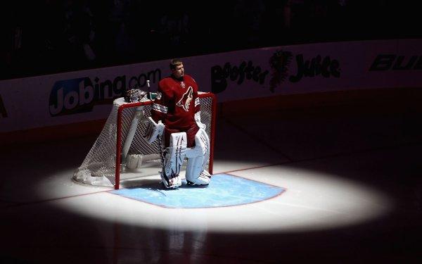 Sports Ilya Bryzgalov Hockey HD Wallpaper | Background Image