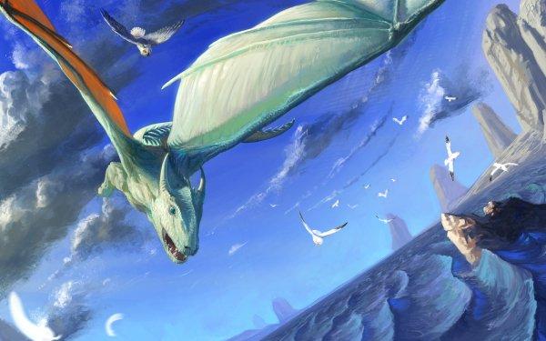 Fantasy Dragon Owl Flying Bird Rock Coast Seagull HD Wallpaper | Background Image